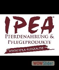 IPEA_Logo_www unten